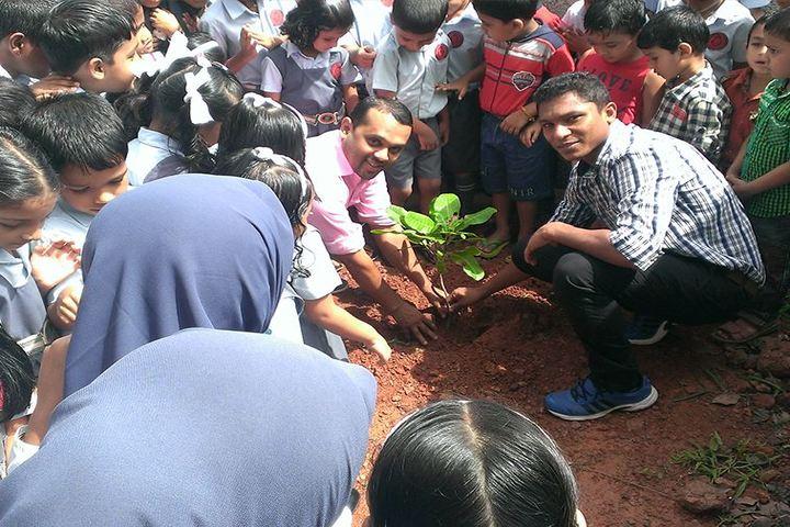 Dawn Public School-Tree Plantation