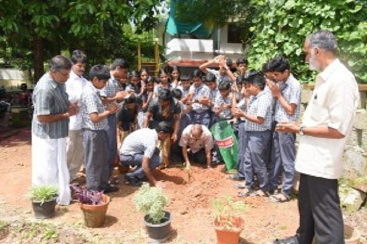 Dr. N. International School-Tree Plantation