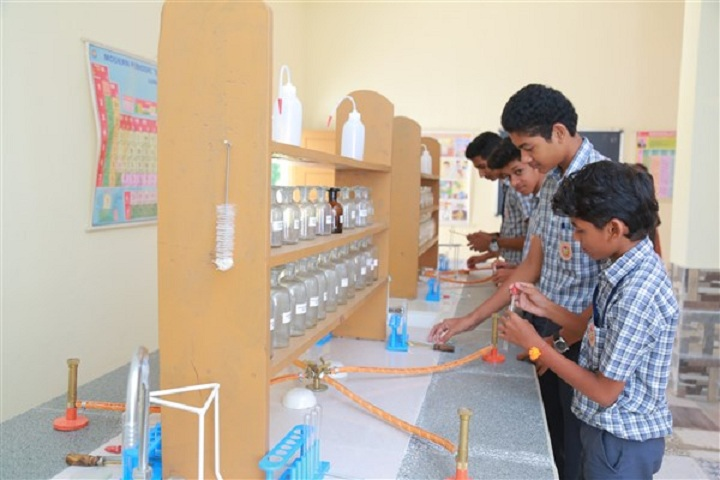 Dr. N. International School-Sciences lab