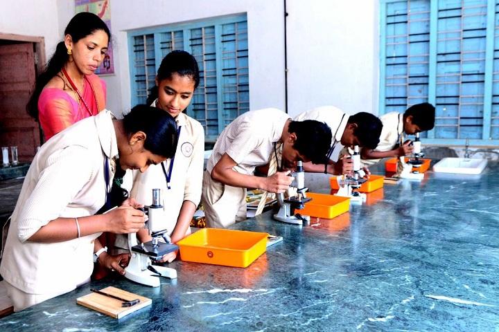 Georgian Public School-Science lab
