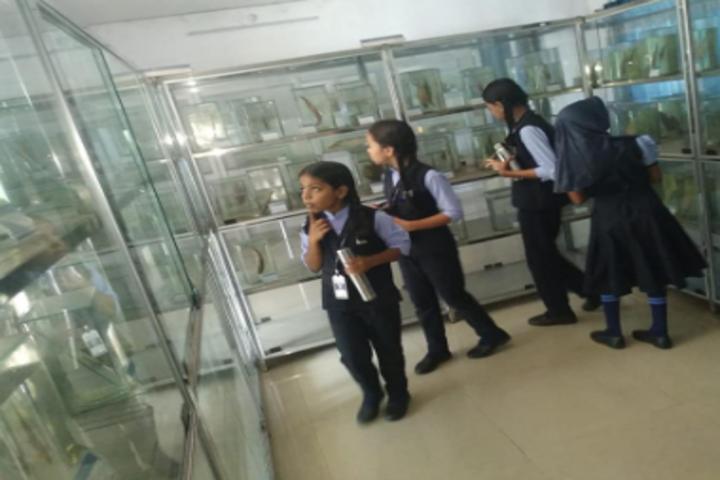 Hira Public School-Field Trip