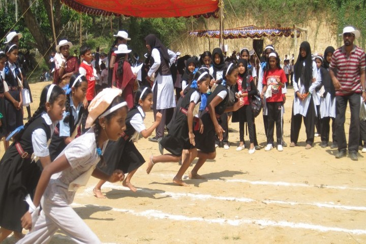 Ideal English School-Race