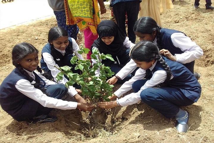 Jai Matha Public School-Plantation