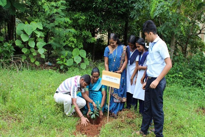 Jawahar Navodaya Vidyalaya-Plantation