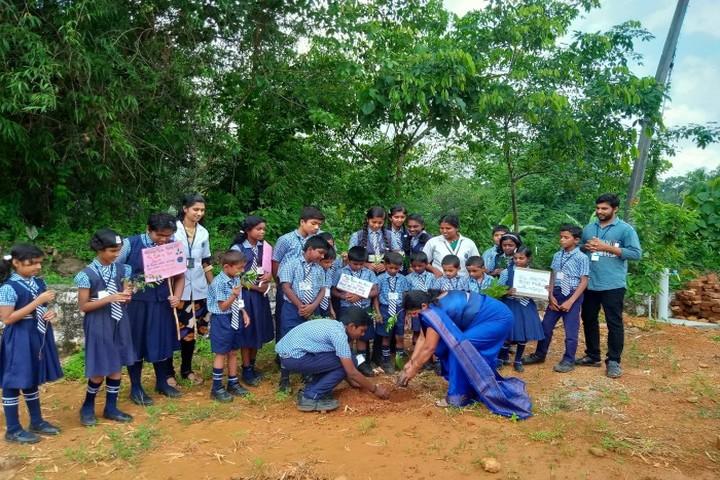Junior Baselios English Medium School-Plantation Day