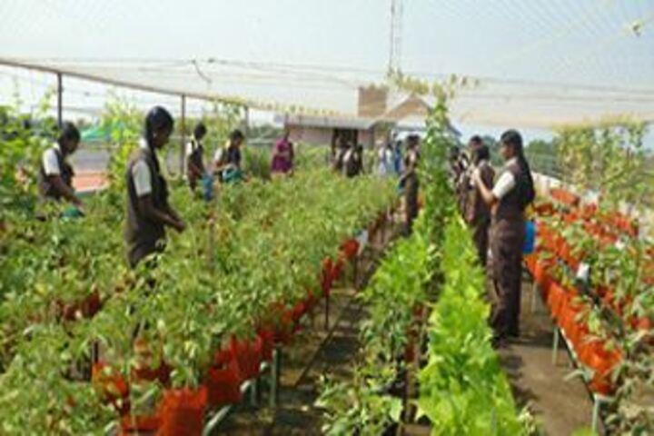 Jyothi Nikethan English Medium School-Environment Day