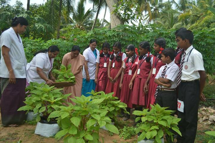 Jyoti Nilayam Secondary School-Plantation Day