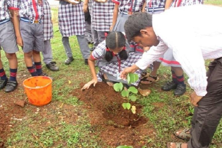 Kendriya Vidyalaya-Plant