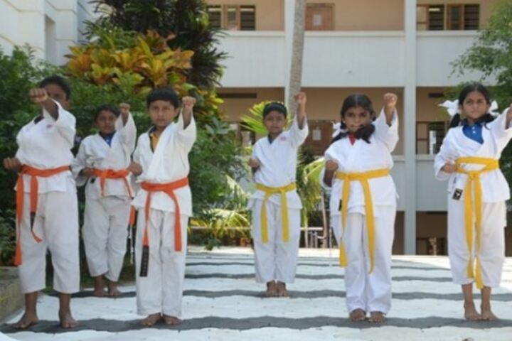 Mar Gregorios Memorial Central Public School-Karate Class