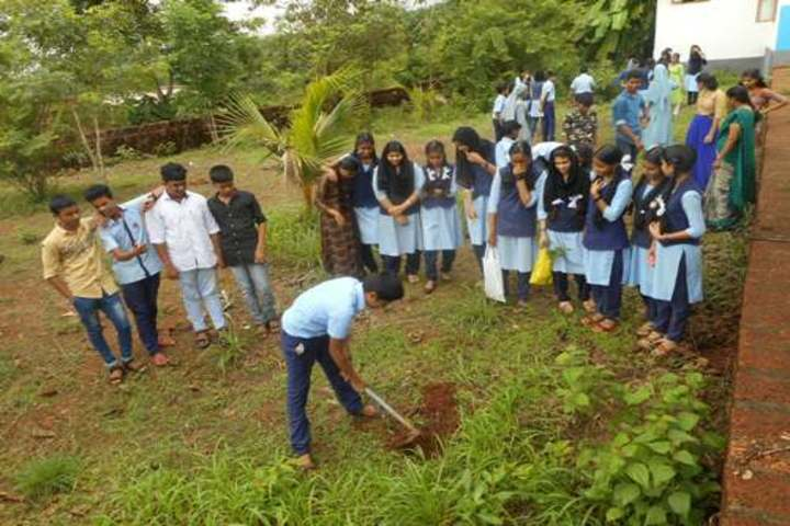 Modern English Medium School-Tree Plantation