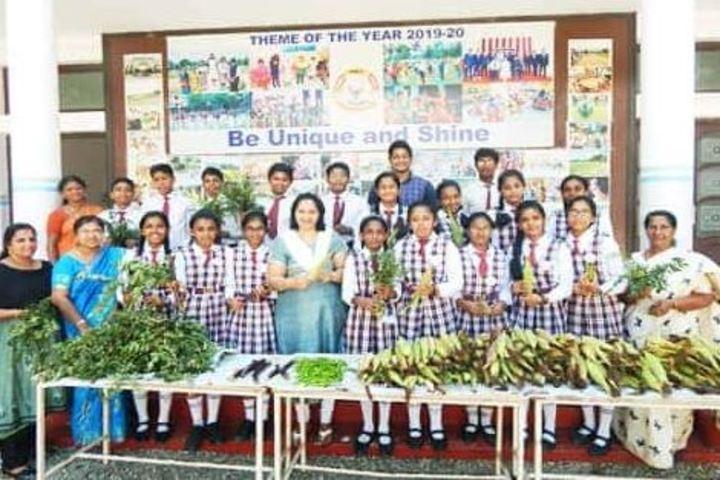 Navdeep Public School-Activity