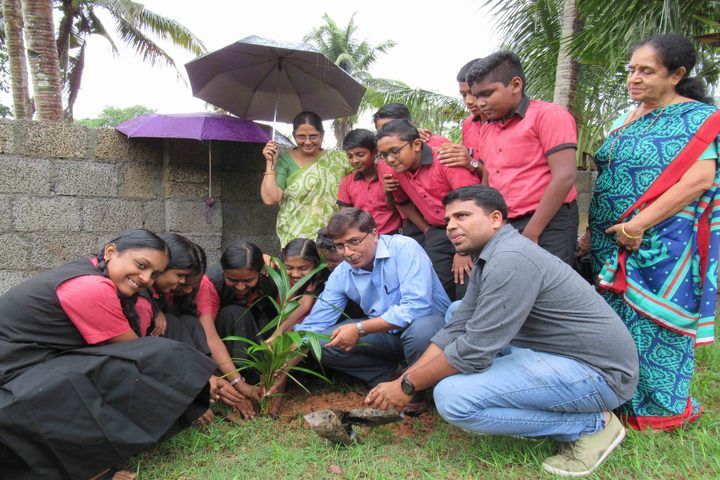 Rajashree S M Memorial School-Tree Plantation