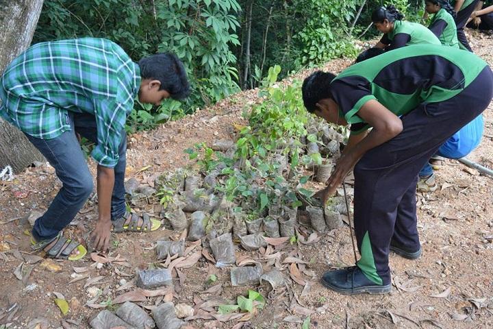 Rajiv Gandhi National School-Planting