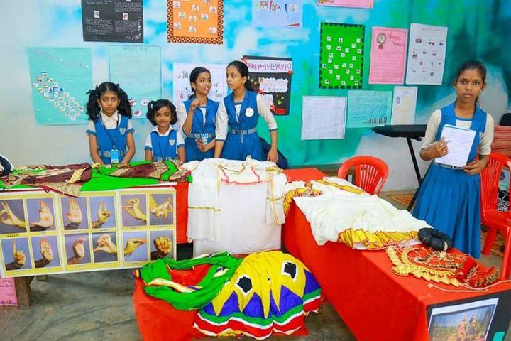 S N Vidya Bhavan Senior Secondary School-Exhibition day