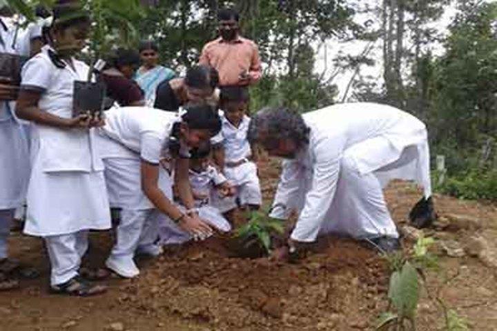 Sree Maharshi Vidyalaya School-Envinorment Day
