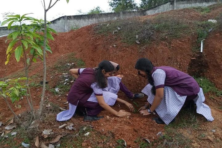 Sree Sankara Vidya Peedhom English Medium School-Plantation Day