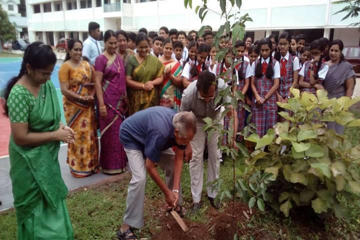 St Marys Residential Public School-Tree Plant